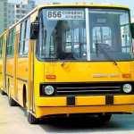 Автобус 856 Солнцево Кунцево