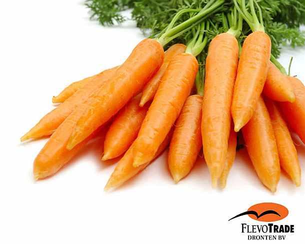 Морковь, овощи
