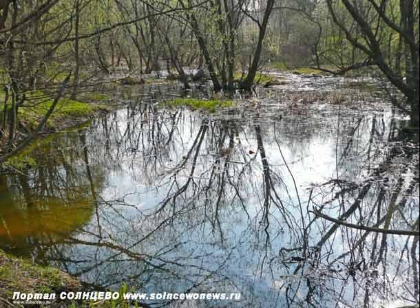 Река Сетунь в Солнцево