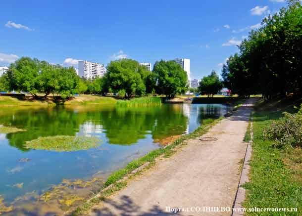 Солнцевский пруд, весна, пейзаж